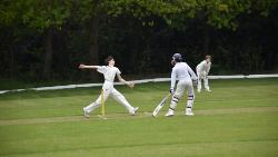 Ist XI Cricket Pitch